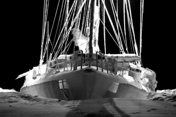 """""""La baleine"""" © Vincent Hilaire - Tara expéditions"""