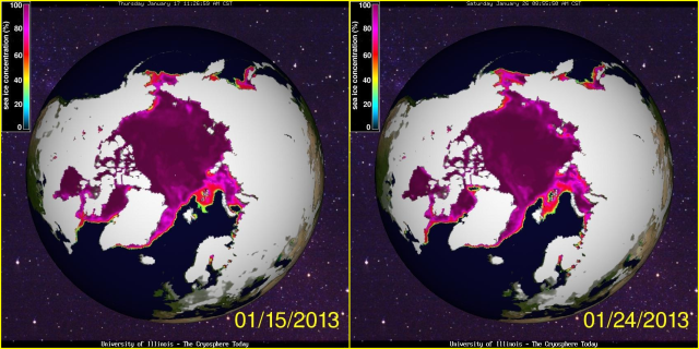 Arctic Sea Ice January 2013