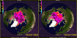 Arctic Sea Ice August 1982 - 1992