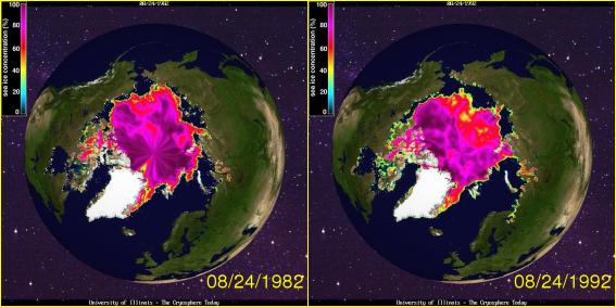 Arctic Sea Ice August 1982 - 1992