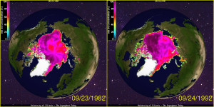 Arctic Sea Ice September 1982 -1992